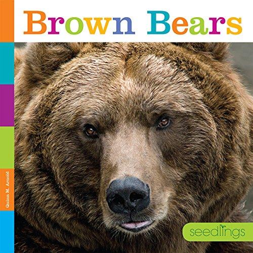 Read Online Seedlings: Brown Bears pdf