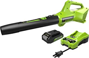 Greenworks 24V Axial Blower (90 MPH / 320 CFM), 2Ah USB Battery (USB Hub) and Charger Included BL24B212