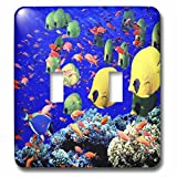 3dRose  lsp_53314_2 Very Colorful Fish Double Toggle Switch