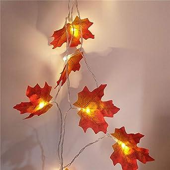 Huichang - Guirnalda de luces de Navidad con 20 LED, funciona con ...
