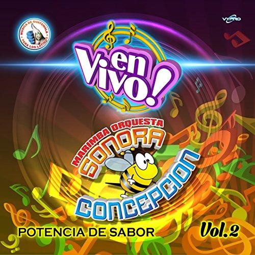 Potencia de Sabor Vol. 2. Música de Guatemala para los Latinos (En Vivo