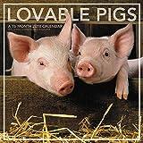 2018 Lovable Pigs Wall Calendar (Landmark)