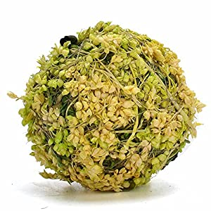Byher Natural Preserved Moss Hanging Ball Vase Bowl Filler for Garden, Wedding, Party Decoration 78