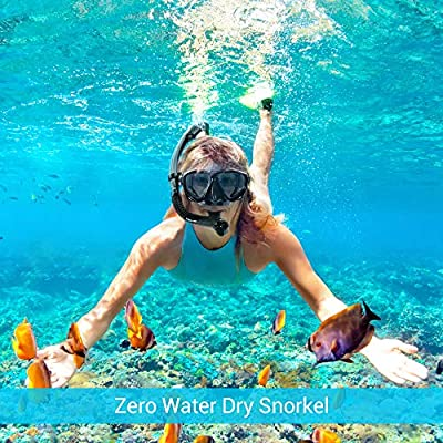 Adult Dry Snorkel Mask Set - Diving Gear Equipment with Easybreath Purge Valve Tube, No Fogging 180 Panoramic Silicone Face Goggles for Freediving, Spearfishing, Snorkeling, Swimming