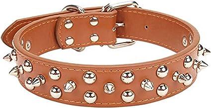 Med//Large Dog Neck up to 32 Handmade Mushroom Dog Collar