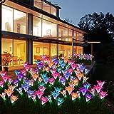 Solar Garden Stake Lights Outdoor 2-Pack LED