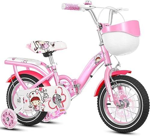 Qazxsw Bicicletas para Niños Bicicletas Niñas 2-4 Años De Edad Niño Pedal Balance Coche 4-8 Años De Edad Plegable Bicicleta Deportes Al Aire Libre Bicicleta,Rosado,14inches: Amazon.es: Hogar