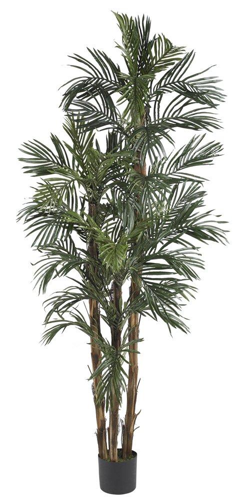 ほぼ自然5284 Robellini Palmシルクツリー、1.83メートル、グリーン B00627GVEO