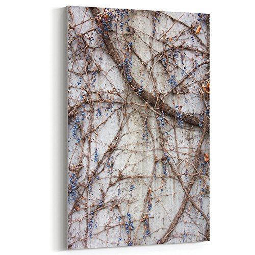 Westlake Art - Vine Berry - 12x18 Canvas Print Wall Art - Canvas Stretched Gallery Wrap Modern Picture Photography Artwork - Ready to Hang 12x18 Inch (CE3F-70DD0) (Berry Floral Wallpaper)