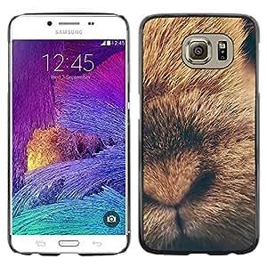 Caucho caso de Shell duro de la cubierta de accesorios de protección BY RAYDREAMMM - Samsung Galaxy S6 SM-G920 - Rabbit Baby Fur Animal