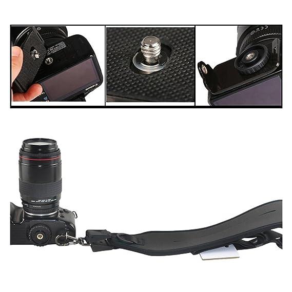 Correa de camara - TOOGOO(R) Camara de correa Cinturon correa honda de hombro solo para camara de Canon Nikon Sony (Negro): Amazon.es: Electrónica