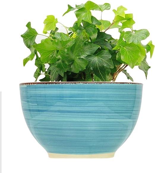 LTM maceta de cerámica decorativa (2 paquetes) para macetas de 14 cm – Macetas decorativas para jardín al aire libre/interior escritorio de oficina, macetas con agujero de drenaje – 2 paquetes: Amazon.es: Jardín