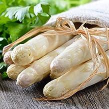 Asparagus Seeds - Asparagus officinalis