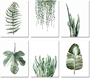 """Plant Leaf Posters Wall Art for Living Room Decor for Bedroom Aesthetic Boho Wall Decor Prints Canvas Paintings (Set of 6pcs)-Unframed-8""""x10"""" (Option 1)"""