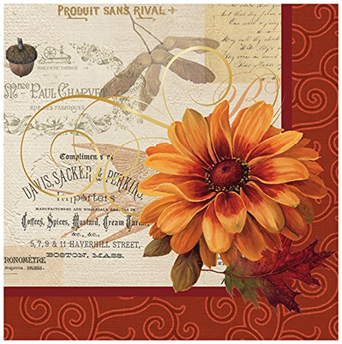 C.R. Gibson Fall Flowers 20 Count Lunch Napkins, Red/Orange (Napkins Thanksgiving Lunch)