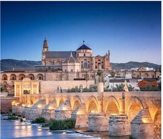 HCYEFG Puzzle 1000 Piezas Puente Romano Y Río Guadalquivir Gran Mezquita Córdoba España Arte Bricolaje para Adultos Mayores Adultos: Amazon.es: Hogar