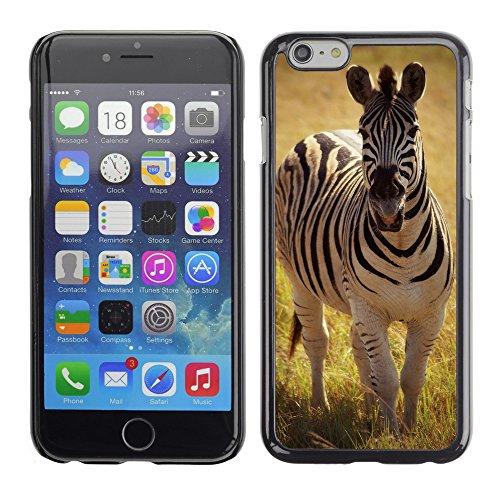 "Premio Sottile Slim Cassa Custodia Case Cover Shell // F00019462 Zebra en safari // Apple iPhone 6 6S 6G PLUS 5.5"""