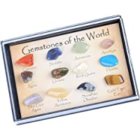 HOMYL Educational Geology Science Kit - Rock and Mineral Collection (15pcs) in a Display Case