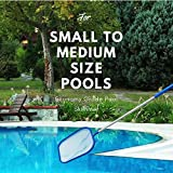 Aquatix Pro Pool Skimmer Economy Grade with