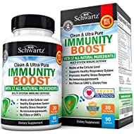Immunity Boost Supplement with Elderberry, Vitamin A, Echinacea & Zinc - Once Daily Multi-System Immune Defense - Promotes Healthy Stress Response - Supports a Healthy Respiratory System - 90 Capsules