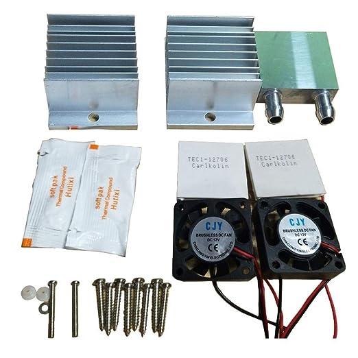 G-wukeer Refrigerador termoeléctrico Peltier de Doble núcleo, Kit ...