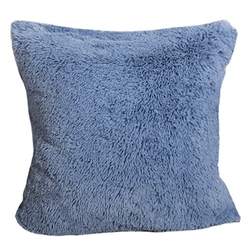 Luxury Decorative Pillows (Homey Cozy Faux Fur Throw Pillow Cover,Baby Blue Double-Side Luxury Fluffy Super-Soft Plush Fur Decorative Couch Cushion Pillow Case 20 x 20 Inch, Cover Only)