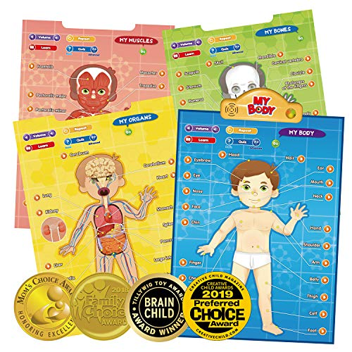 BEST LEARNING i-Poster My Body - Interactive Educational Human Anatomy Talking Game Toy System to Learn Body Parts, Organs, Muscles and Bones for Kids Aged 5 to 12 Years Old (Bones The Change In The Game Cast)