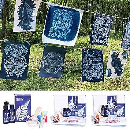 Monkys Juego de Cianotipo Kit de Bricolaje de impresi/ón de Cianotipo de ferricianuro de potasio para Pinturas Textiles de Tela de Papel de impresi/ón Solar