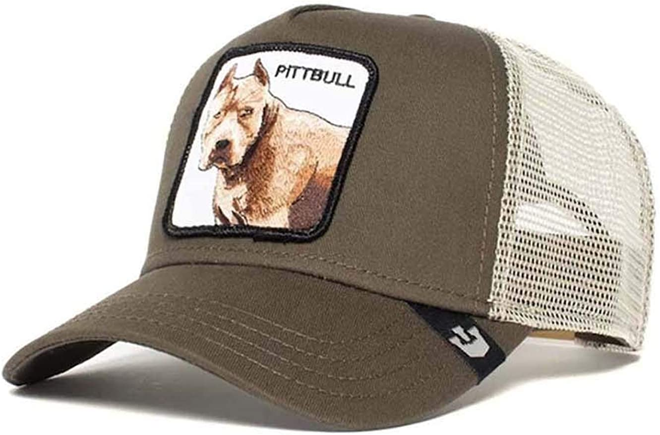Goorin Bros. Pitbull Gorra de Camionero, Grey (2020): Amazon.es ...