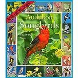 Audubon Songbirds and Other Backyard Birds Picture-A-Day Calendar 2018