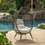 Christopher Knight Home Dermot Multibrown Wicker Lounge Teardrop Chair w/Cushion, Brown