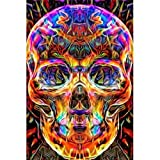 Arts & Crafts : DIY 5D Diamond Painting by Number Kit, Full Diamond Skull Rhinestone Embroidery Cross Stitch Arts Craft for Canvas Wall Decor