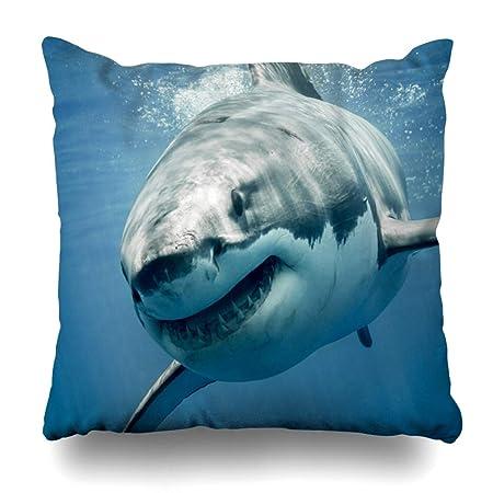 Amazon.com: DIYCow - Funda de almohada de seda, diseño de ...