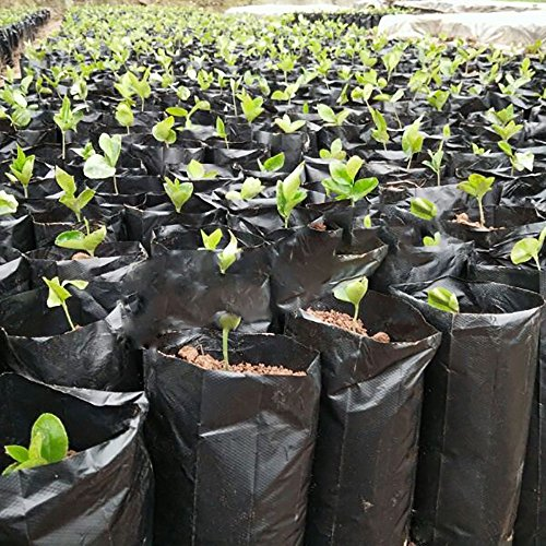 Mr. Garden Plastic Nursery Bag For Soil, Coco Coir, Grodan, W7.9''xL15.7'' black (25pcs) by Mr Garden