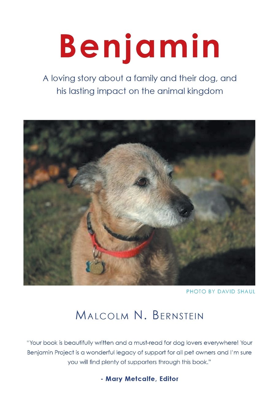 Benjamin: A loving story about a family and their dog and his lasting impact on the animal kingdom
