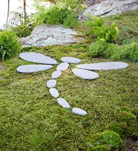 Piedras decorativas libélula jardín acento: Amazon.es: Jardín