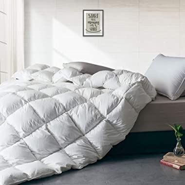 APSMILE Luxurious All Seasons European Goose Down Comforter Full/Queen Size Duvet Insert -1600TC Ultra-Soft Egyptian Cotton, 47 Oz 750 Fill Power Fluffy Medium Warmth, Solid White