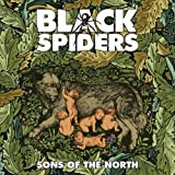 Sons Of The North [VINYL]