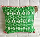 Green/red/white pillow, hand embroidered by the Otomi from Mexico