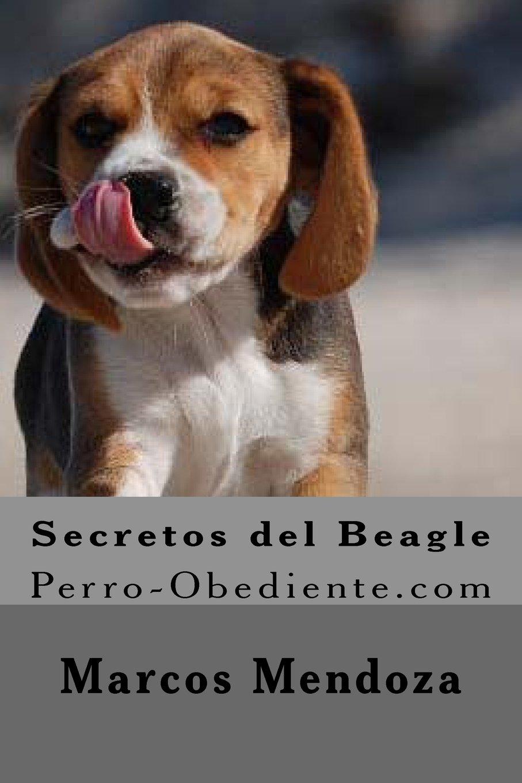 Secretos del Beagle: Perro-Obediente.com: Amazon.es: Marcos Mendoza: Libros