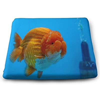 Randolph Wordsworth Popular Pet Or Ornamental Fish Seat Cushion Memory Foam Dining Chair Pads Stool Butt Seat Pillow Cushions for Pressure Pain Relief Offices Wheelchairs Kitchens Cars : Garden & Outdoor