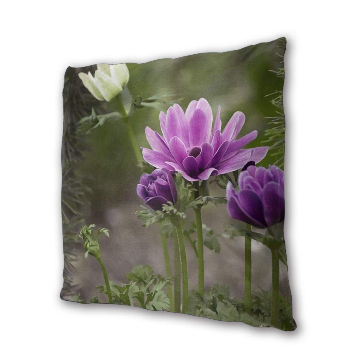 Square Pillow,Anemone Violet Purple,Pillow Inserts,Square Form Polyester,2 Packs,Standard//Multi-size,