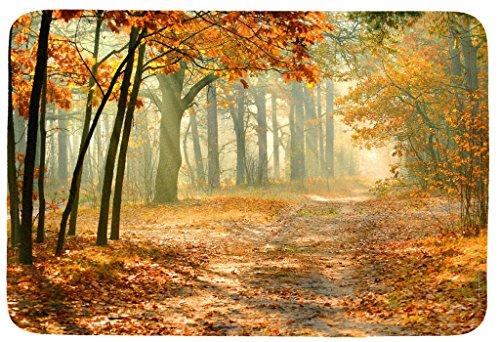 Wondertify Doormat, Landscape,Autumn Forest Tree Indoor/Kitchen/Bathroom Mats Rubber Non Slip Door Mats 18