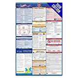2018 Illinois Labor Law Poster – State, Federal, OSHA Compliant – Laminated Mandatory All in One Poster