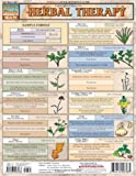 Herbal Therapy (Quick Study: Health)
