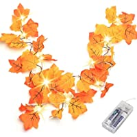 Thanksgiving Decorations Lighted Fall Garland, Thanksgiving Decor Halloween String Lights 8.2 Feet 20 LED, Thanksgiving…