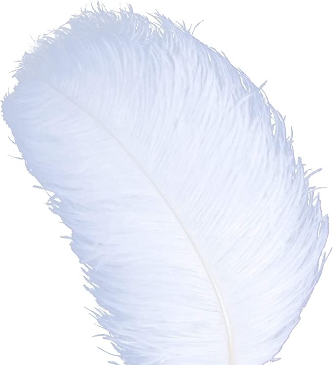 Ostrich Feathers 6-8inch Champagne Ostrich Feathers Plume for Wedding Centerpieces Home Vase Decoration per Pack of 20