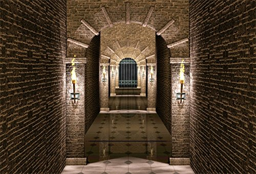 (LFEEY 7x5ft Medieval Castle Corridor Backdrop Torch Lightning Iron Castle Gate Tunnel Interior Photography Background for Portraits Halloween Photo Booth)