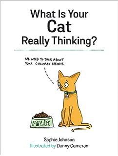is my cat gay quiz