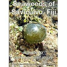 Seaweeds of Savusavu, Fiji: a guide to common reef algae